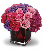 Teleflora's Enchanted Journey
